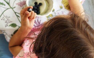 Alimentele de bază din dieta Fără gluten, Fără lactoza, Fără ou, Fără lactate
